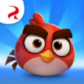 Angry Birds Casual中文版