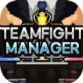 teamfight manager�h化�a丁